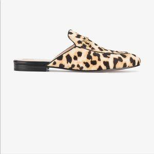 Gucci Princeton Leopard Slides Mule w. Box